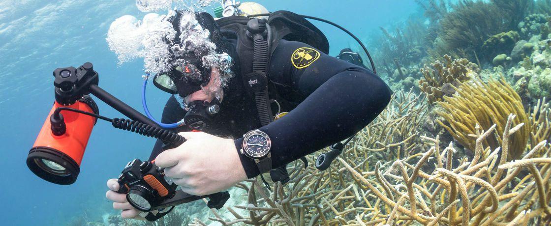 进化总是一件好事吗?——与豪利时ProDiver GMT腕表一起潜水