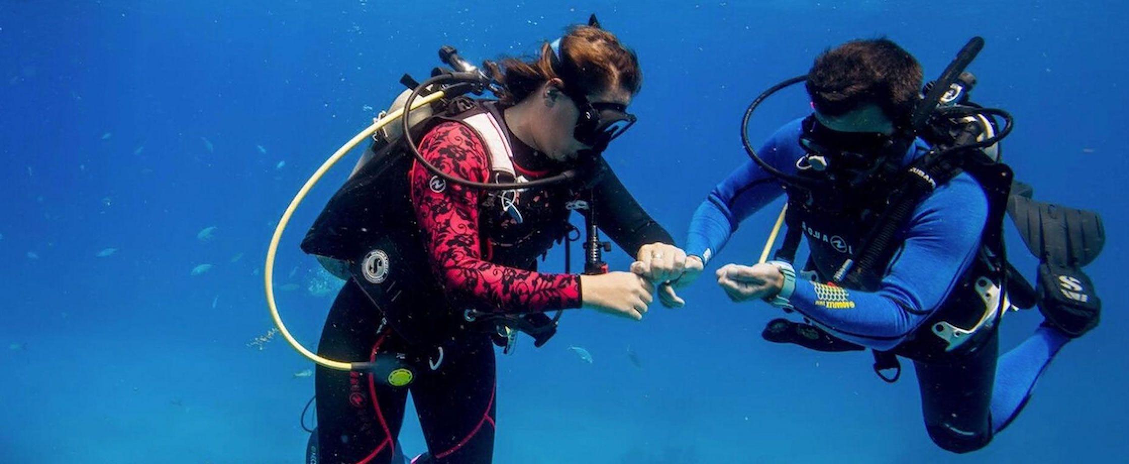 两万价格区间能买到的最专业的7款潜水表