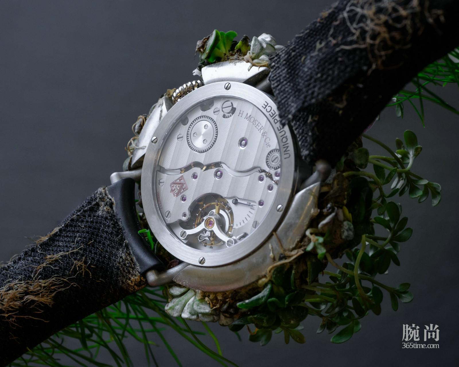 Moser Nature Watch_8327-1200_Back.jpg