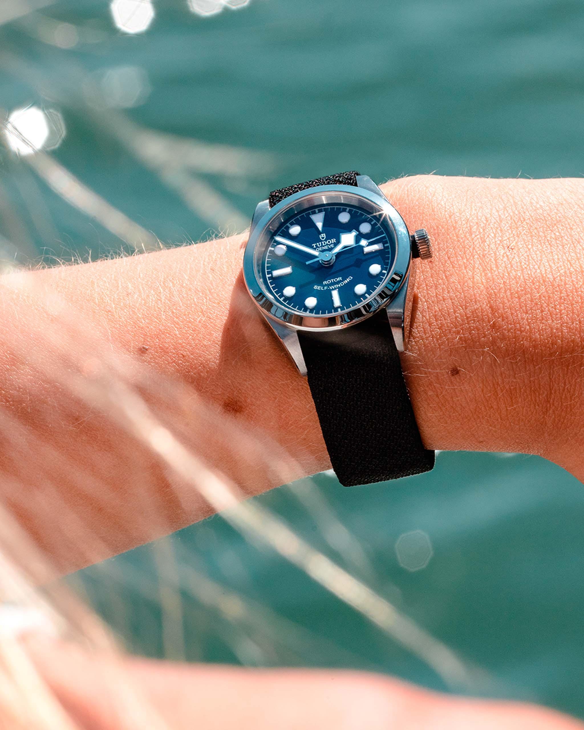 帝舵蓝 -深入海洋,探秘自然