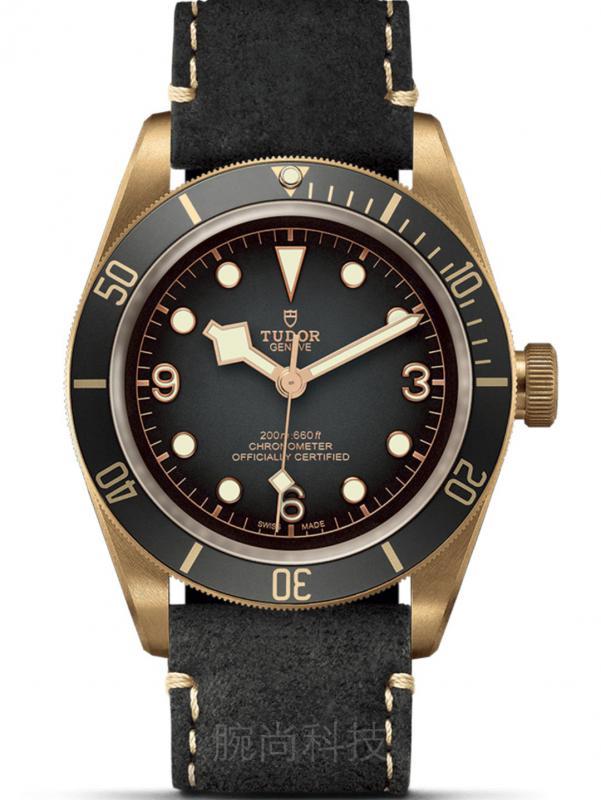 帝舵碧湾系列青铜潜水表M79250BA-0001